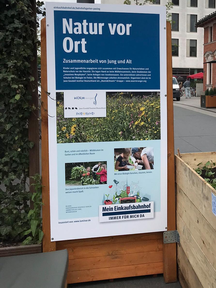 Urban Gardening Start Pasing