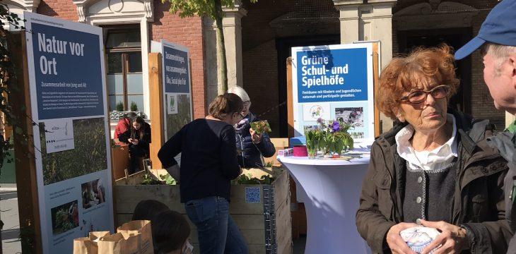 Urban Gardening – Orangenmarmelade mit Brenneseln