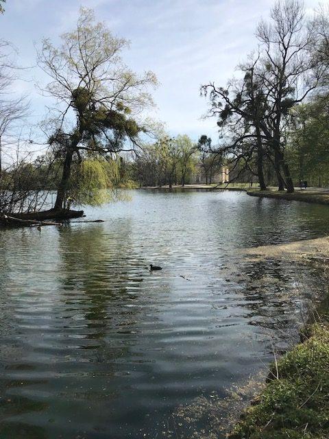 Badenburg im Schlosspark