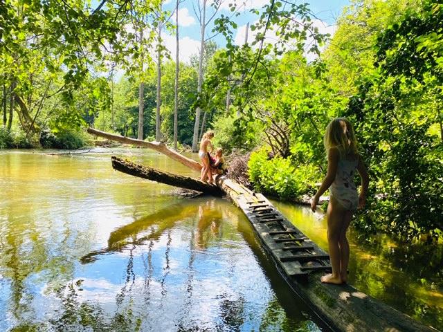 Hier ist es wie im Paradies. Mila, Emi und Ella erkunden die Würm über einen Baumstamm, der im Wasser liegt.