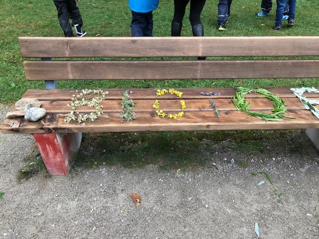 LandArt: Pflanzen werden gesucht, genau wird geschaut, das ganze Gelände hier ein BIOTOP. Jetzt wissen die Kinder Bescheid.