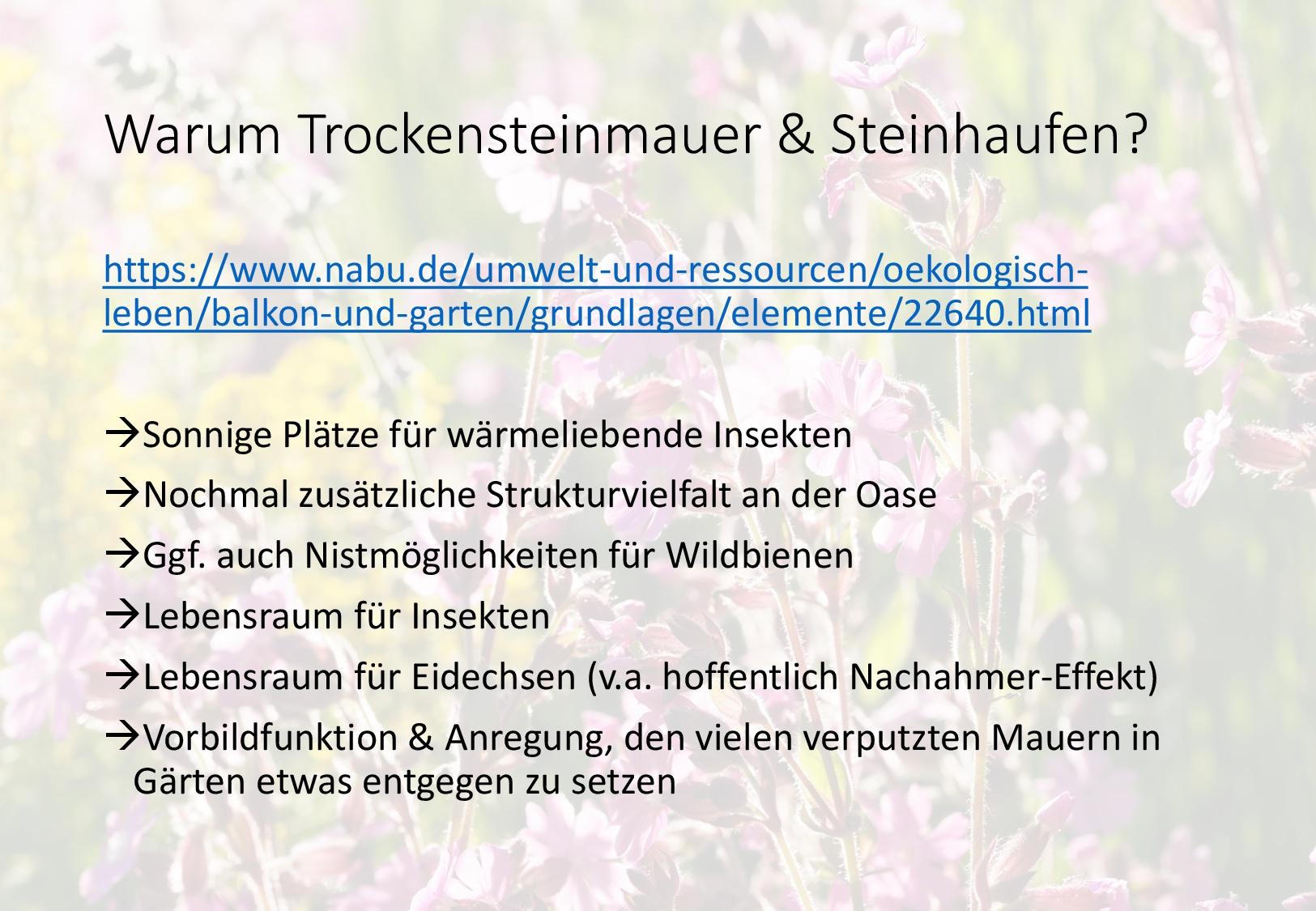 Vorschlag Insektenoase Gartenbau-Seite 2-006