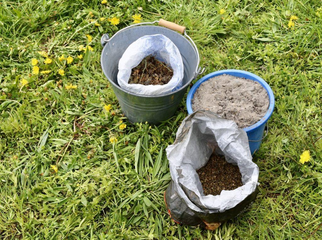 Sand und zwei Samen werden erst gemischt. (Foto: B. Hetze)